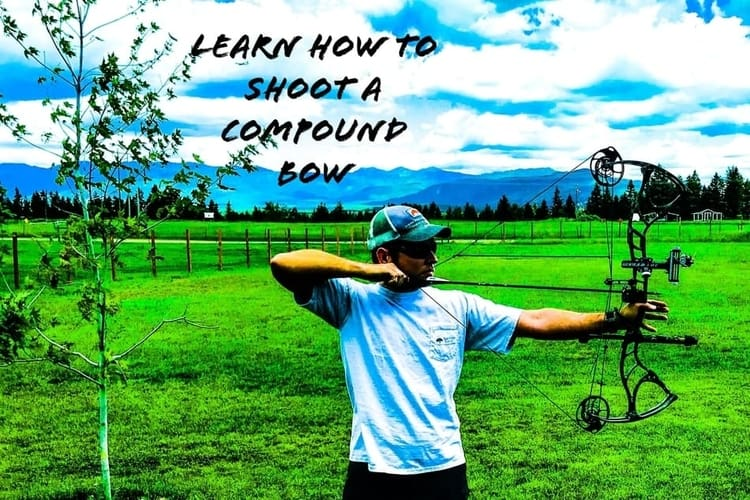 Learn How To Shoot A Compound Bow
