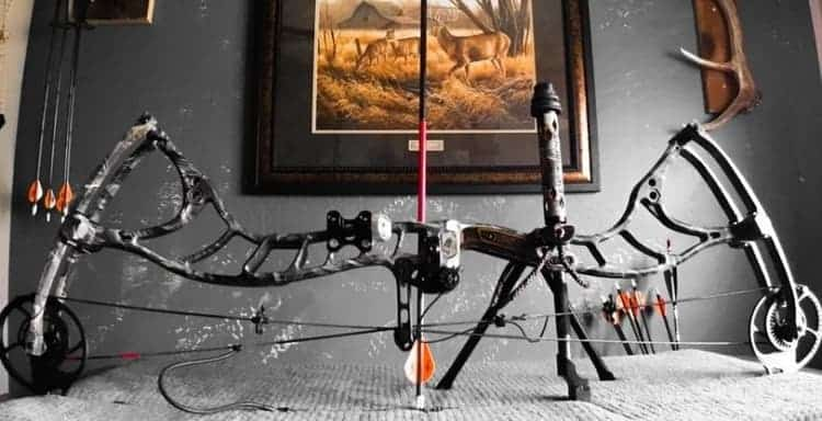What Bow and Arrow Accessories Do You Really Need?