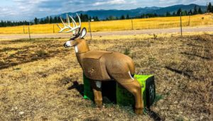 cheap 3 d archery targets